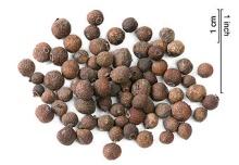 Dried allspice