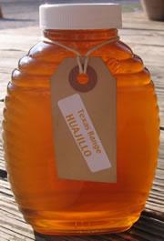 Guajillo Honey
