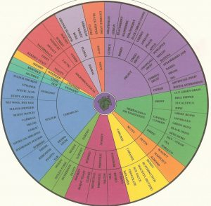 Wine Aroma Wheel Widely used by the wine judging community, buy one at www.winearomawheel.com